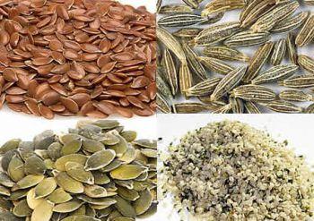 Τροφή από σπόρους (χάμστερ)