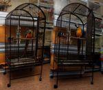 Κλουβιά και αναθρεπτήρια εσωτερικών χώρων (παπαγαλοι)