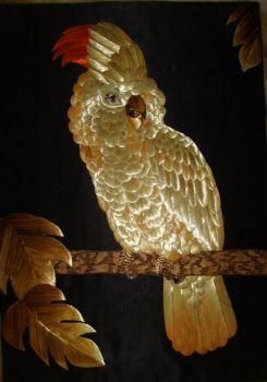 Η τάξη των παπαγάλων