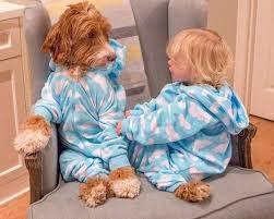 Εξηγήστε στα παιδιά σας για τα σκυλιά